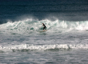 Surfing at Manly Beach